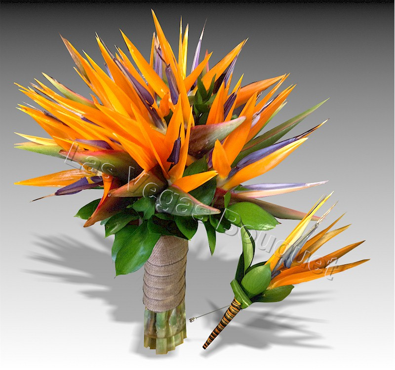 Bird of Paradise SET - Wedding Florist for Las Vegas, NV